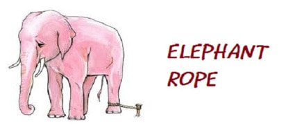 The-Elephant-Rope